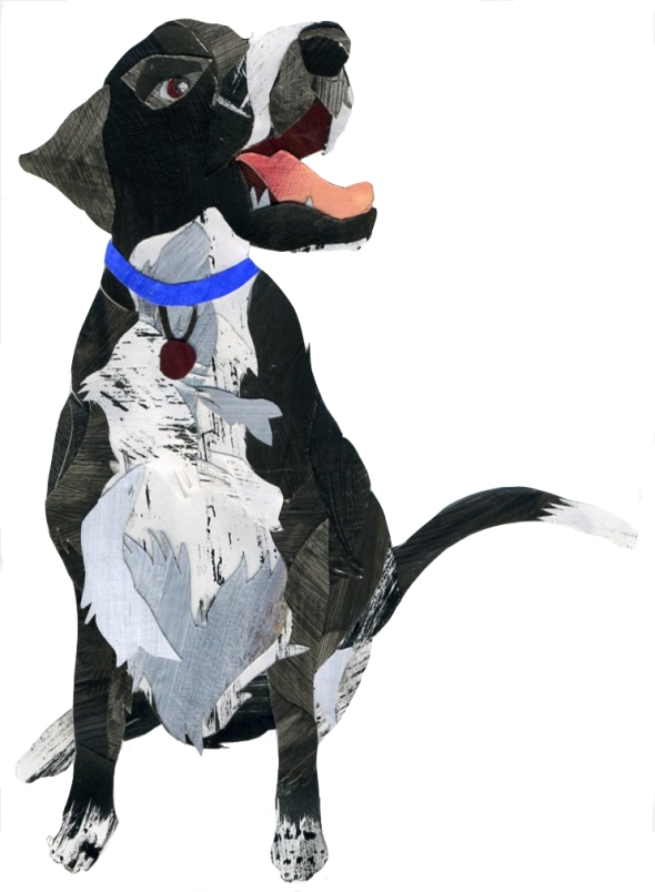 doggie019
